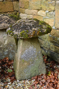 An 18th century stone staddlestone
