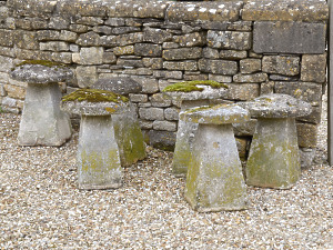 A group of six Cotswold stone staddle stones