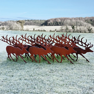 'Rudolph' The Rusty Reindeer