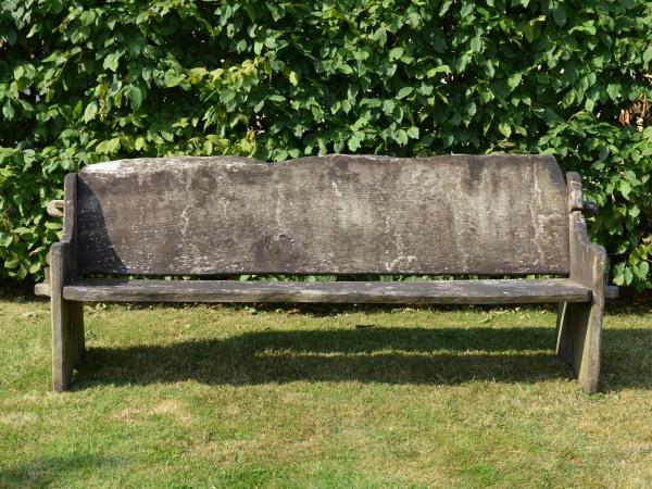 A long rustic elm plank seat