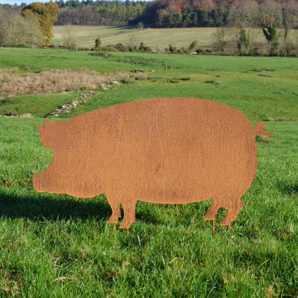 'Colin' The Rusty Pig