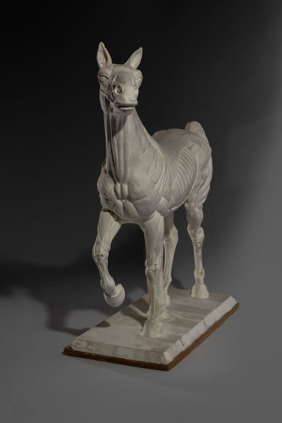 'Horse with Anatomy' Sir Eduardo Paolozzi 1924 - 2005
