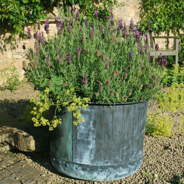 The Circular Copper Garden Planter - Small